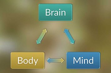 Anxiety Treatment Gold Coast Body Mind Brain