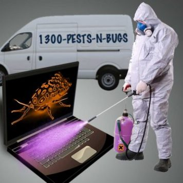 Spraying a computer bug vs Neurotherapy